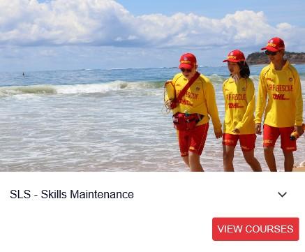 Skills Maintenance Module